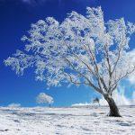 آغاز نخستین بارش برف زمستانه در دهدز/جاده سرصحرا بسته شد