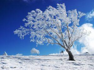 بارش برف ارتفاعات ایذه را سفید پوش کرد