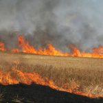 مراتع و درختان بخش مرغاب ایذه دچار آتشسوزی شد
