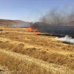 آتشسوزیهای ادامهدار در مزارع ایذه؛ تهدیدی برای طرحهای کشاورزی