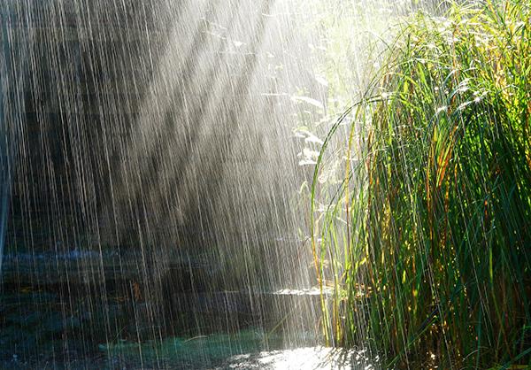 هوای ایذه بارانی میشود