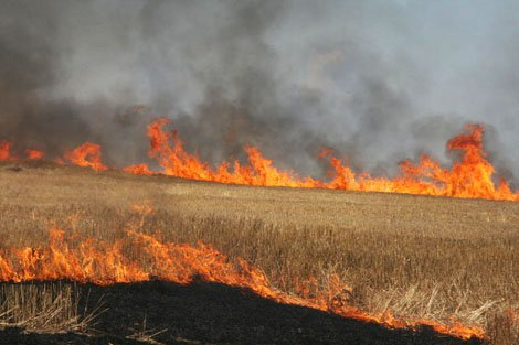 شعلههای آتش بر جان مراتع ایذه/شعلههای آتش کوه اطراف پلهای قوسی سد کارون ۳ فروکش کرد